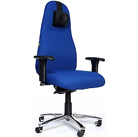Large Therapod 747 High Back Orthopaedic Chairs £676 - Office Chairs