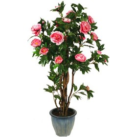 Peony Tree with Natural Stem - 4.5ft £0 - Office Furnishings