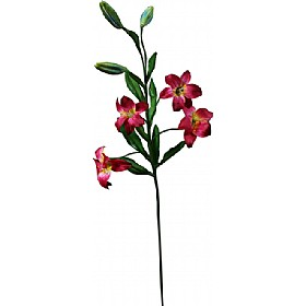 Single Stem Asiatic Lily - Deep Red £0 - Office Furnishings