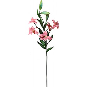 Single Stem Asiatic Lily - Salmon Pink £17 - Office Furnishings