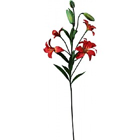 Single Stem Asiatic Lily - Red £0 - Office Furnishings