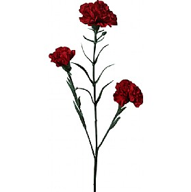 Triple Stem Carnation - Red £0 - Office Furnishings