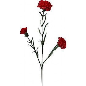 Triple Stem Carnation - Deep Red £0 - Office Furnishings