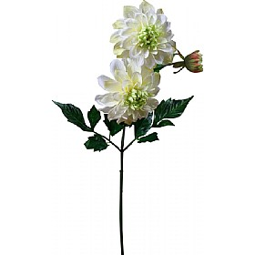 Single Stem Dahlia - White £0 - Office Furnishings