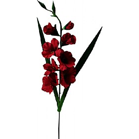 Single Stem Gladioli - Red £20 - Office Furnishings