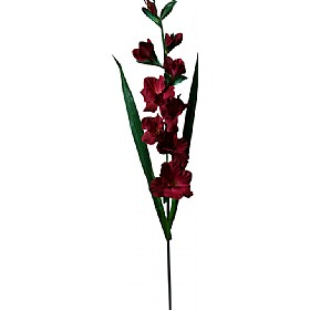 Single Stem Gladioli - Burgundy Red £0 - Office Furnishings