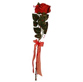Gift Wrapped Rose with Gift Tag - Deep Red £0 - Office Furnishings