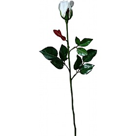 Single Stem Closed Bud Rose - White £17 - Office Furnishings