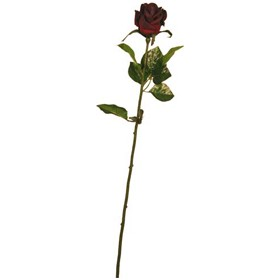 Single Stem Half Open Rose - Deep Red £18 - Office Furnishings