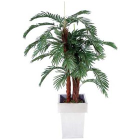 Mini Palm - 4ft 6in £73 - Office Furnishings