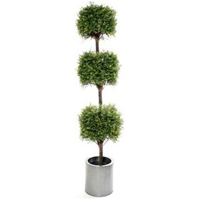 6ft Tea Tree Topiary with Natural Stem £0 - Office Furnishings