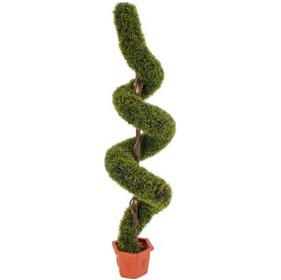 5ft 6in Spiral Grass Topiary £135 - Office Furnishings
