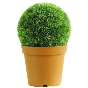 31cm Diameter Melon Grass Ball £0 - Office Furnishings