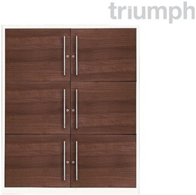 Triumph Metrix n Wood Storage Lockers £277 - Office Desks