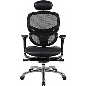 Desire 24Hr Ergonomic Chair Mesh Back Leather Seat With Headrest £329 - Office Chairs