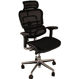ergohuman mesh office chairs with headrest ergohuman mesh office chairs. Black Bedroom Furniture Sets. Home Design Ideas