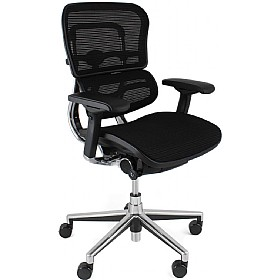Ergohuman Mesh Office Chairs (Without Headrest) £452 - Office Chairs