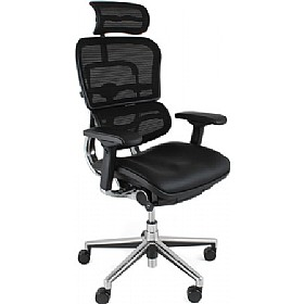 Ergohuman Mesh & Leather Office Chairs (With Headrest) £532 - Office Chairs