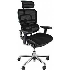 Ergohuman Mesh & Fabric Office Chairs (With Headrest) £519 - Office Chairs