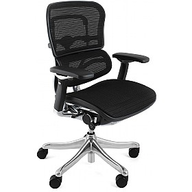 Ergohuman Plus Mesh Office Chair (Without Headrest) £606 - Office Chairs