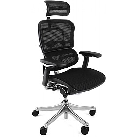 Ergohuman Plus Mesh Office Chairs (With Headrest) £630 - Office Chairs