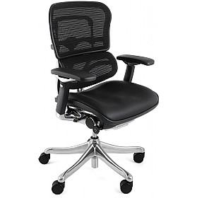 Ergohuman Plus Mesh & Leather Chair (Without Headrest) £635 - Office Chairs