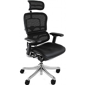 Ergohuman Plus Mesh & Leather Chair (With Headrest) £658 - Office Chairs