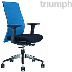 Triumph Vitesse Task Chair £262 - Office Chairs