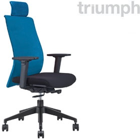 Triumph Vitesse Task Chair With Headrest £307 - Office Chairs