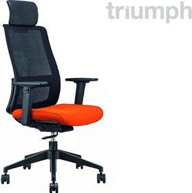 Triumph Vitesse Air Task Chair With Headrest £257 - Office Chairs