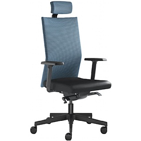 Omega Leather & Mesh Executive Chair £398 - Office Chairs