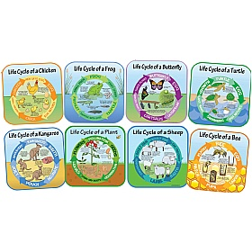Life Cycle Full Set Of 8 Signs £110 - Education Furniture