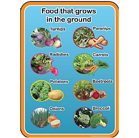 Healthy Eating Food From The Ground Sign £36 - Education Furniture