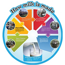 How Milk Is Made Food Cycle Sign £0 - Education Furniture