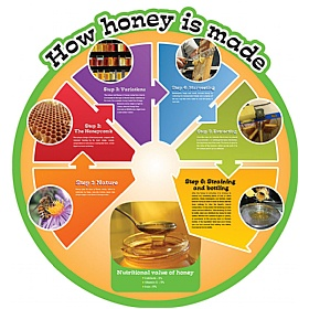 How Honey Is Made Food Cycle Sign £0 - Education Furniture