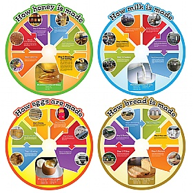 Food Cycle Signs Set Of 4 £0 - Education Furniture