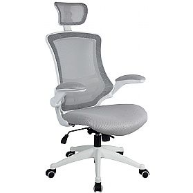 Flexi Mesh Office Chairs £109 -